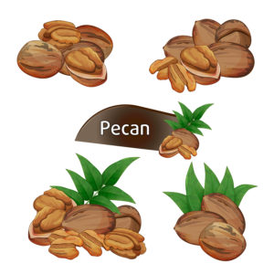The Top 4 Reasons To Buy Pecans