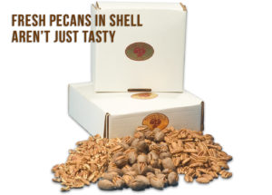 Fresh Pecans In Shell: Everything You Need To Know Before Buying