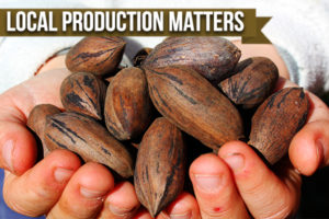 Where You Buy Your Pecans Matters