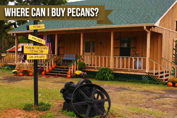 If You're Wondering Where To Buy Pecans Look No Further