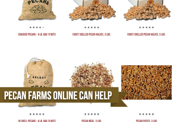 Reasons You Should Turn To Pecan Farms Online